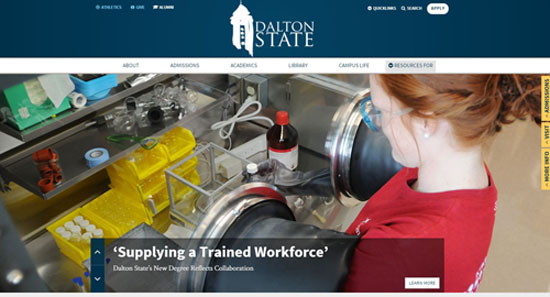 Dalton State College website design